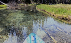 Paddling up Quinn Creek